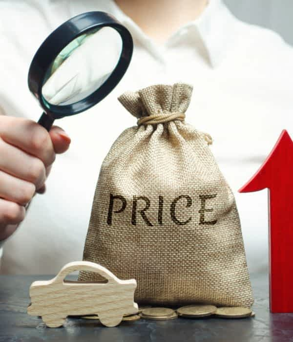 A woman analyzes the prices for the purchase of homes